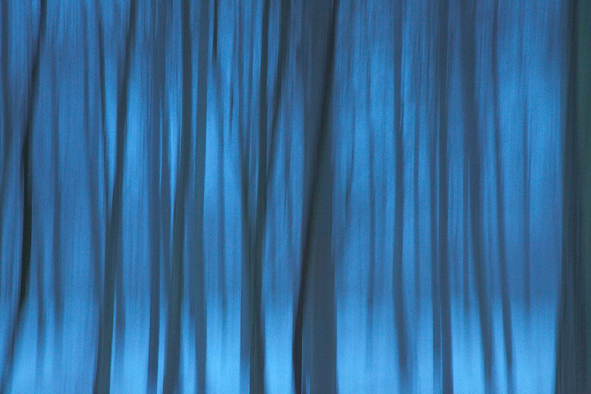 Blå skog - Helena Larsson